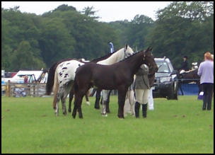 xpresso and Ruth at Angus Show