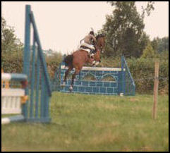 Honetbrook Lauranda Grade A Showjumper